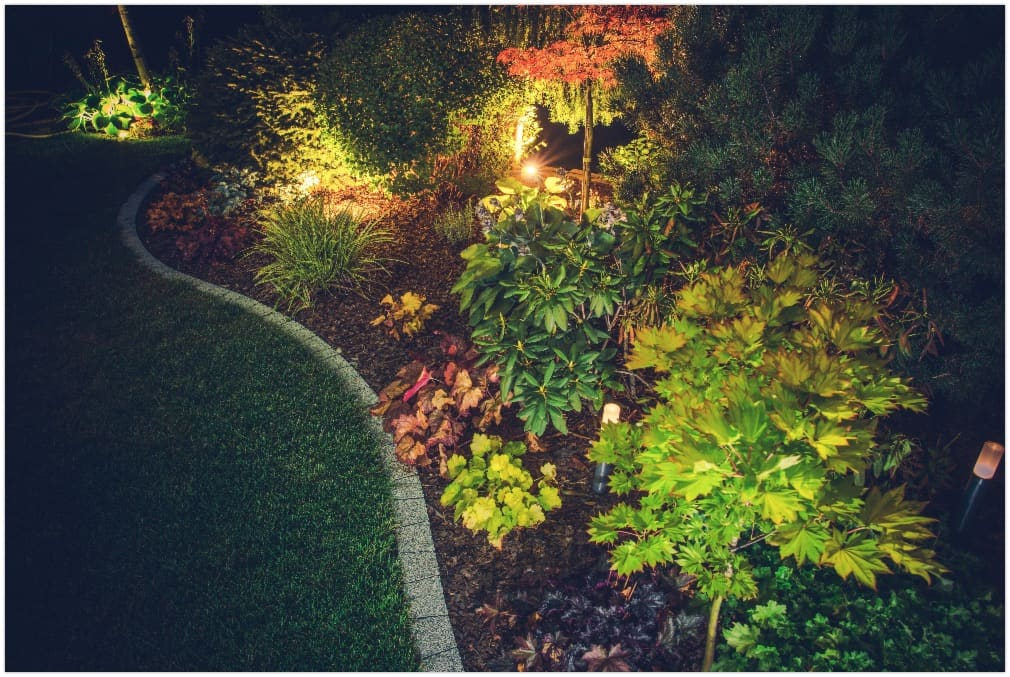 Illuminated Backyard Garden