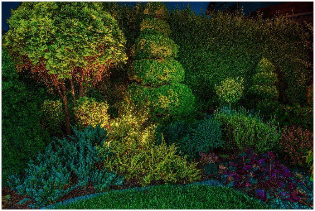 Backyard Garden Led Lighting Illumination